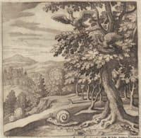 Book of Lambspring (Figure 7)