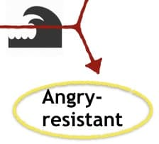 The Angry-resistant Attachment Style