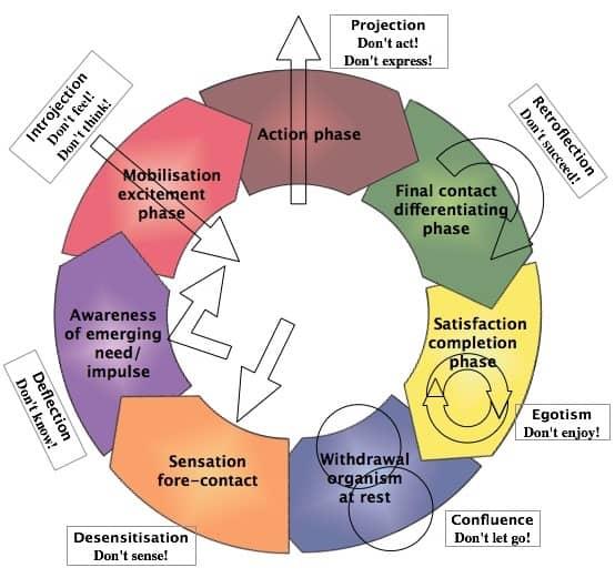 Gestalt Contact Cycle